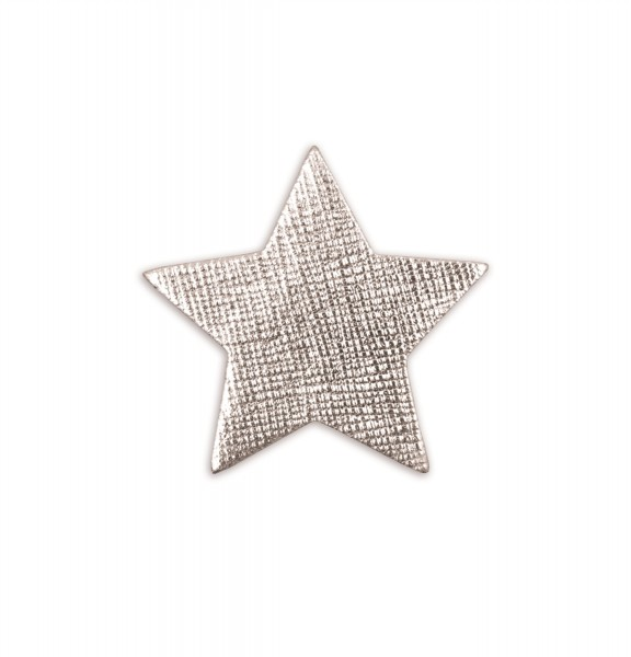 Ledersticker Star Silver 1