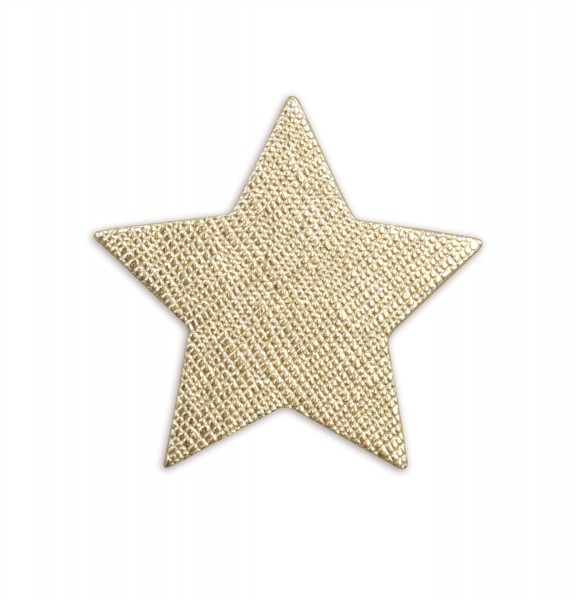 Ledersticker Star Gold 1