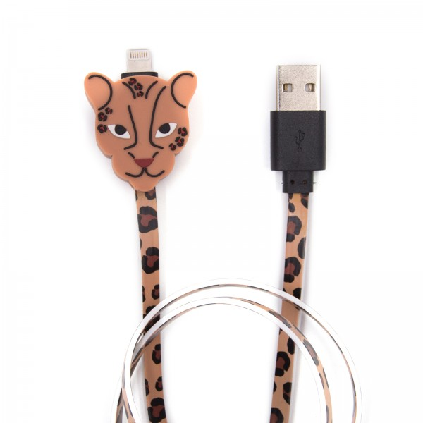 Charging Cable for Apple iPhone - Leo 1