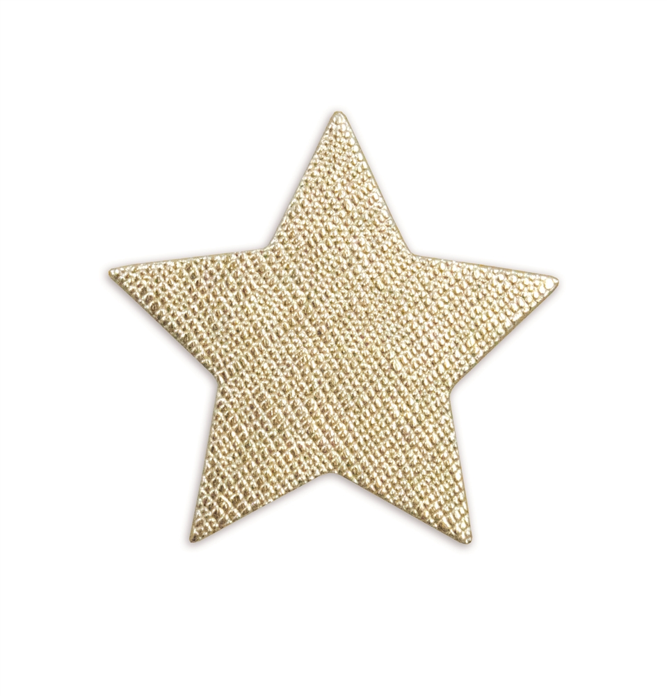 Leather Sticker Star Gold